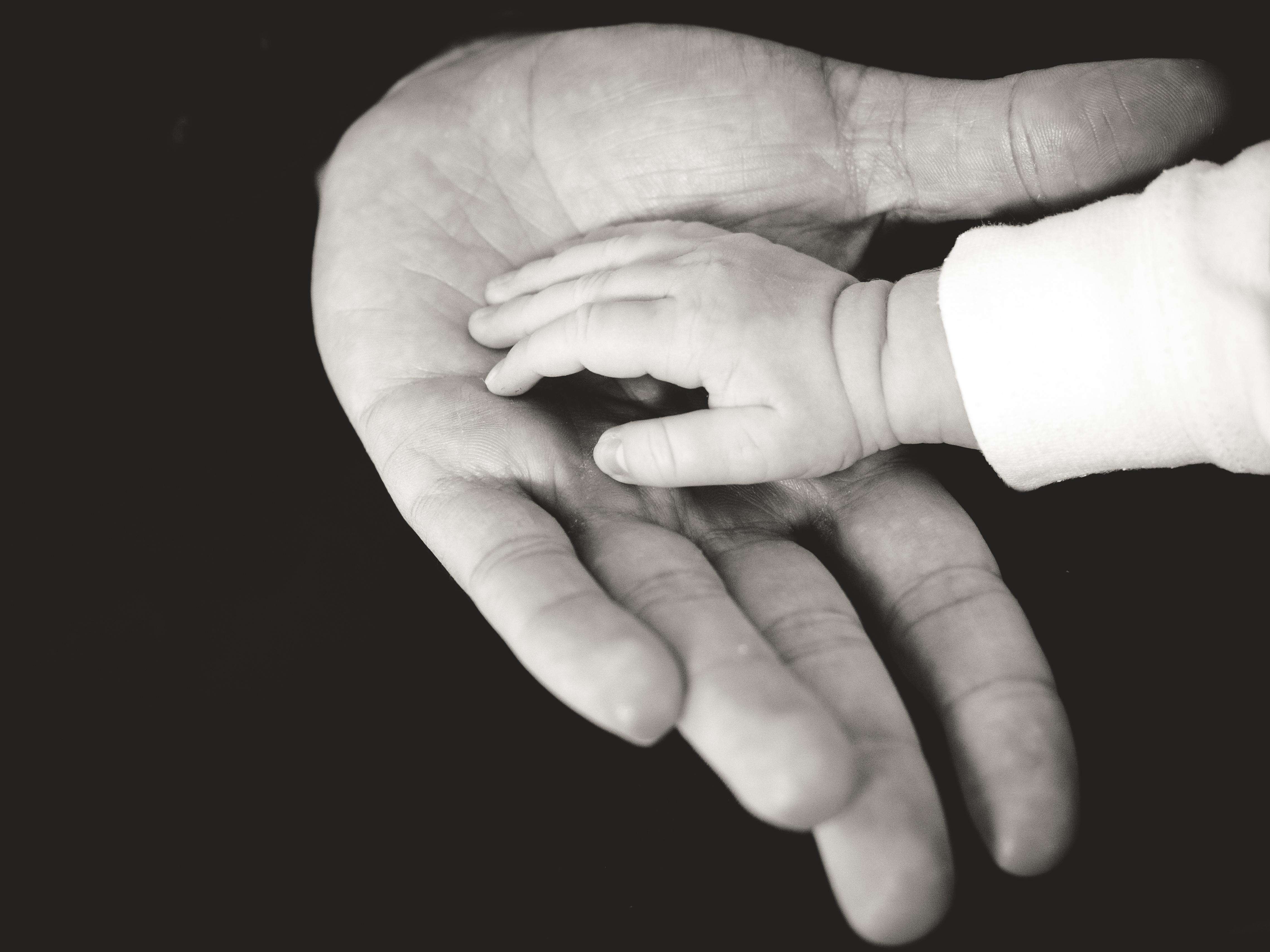 Władza rodzicielska – część 2 – Plan wychowawczy